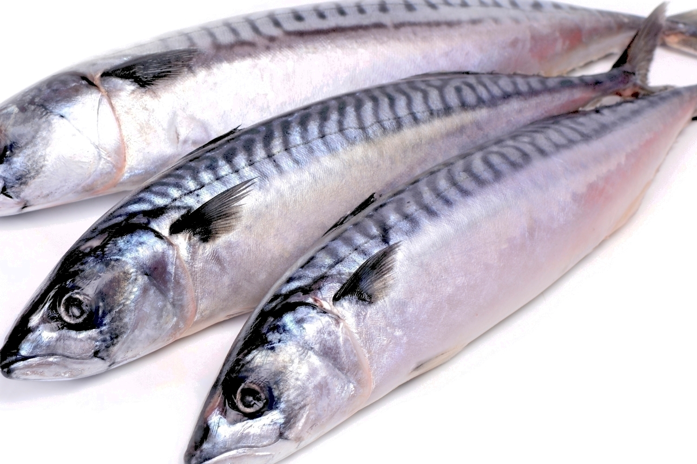 Polar Seafood