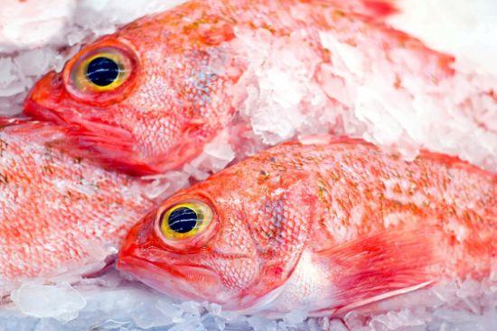 Polar Seafood - The World of Seafood